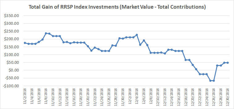 November December 2018 - RRSP Index Portfolio Graph